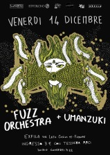 FlyFUZZ ORCHESTRA